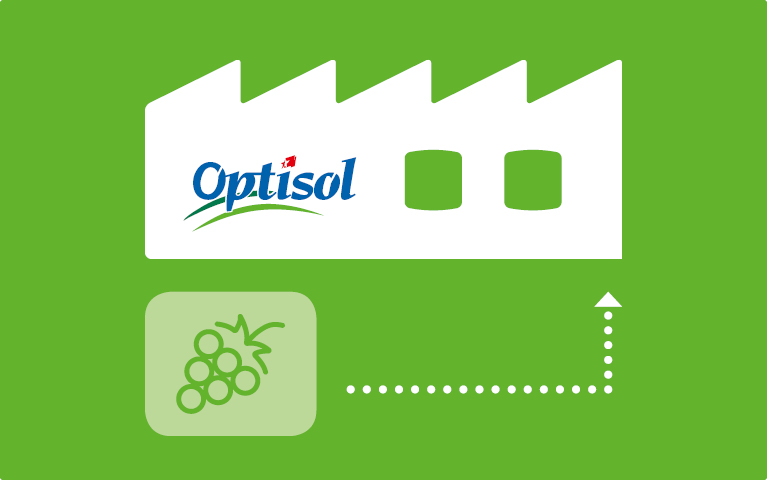 Processus de fabrication Optisol – Optisol Saillon
